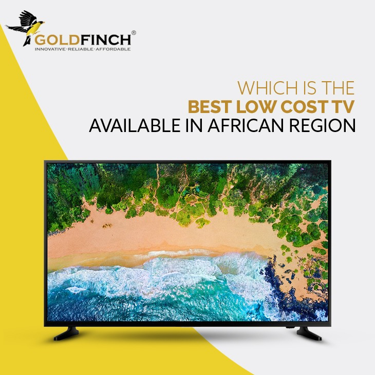 Low Cost Smart Television Brand Goldfinch