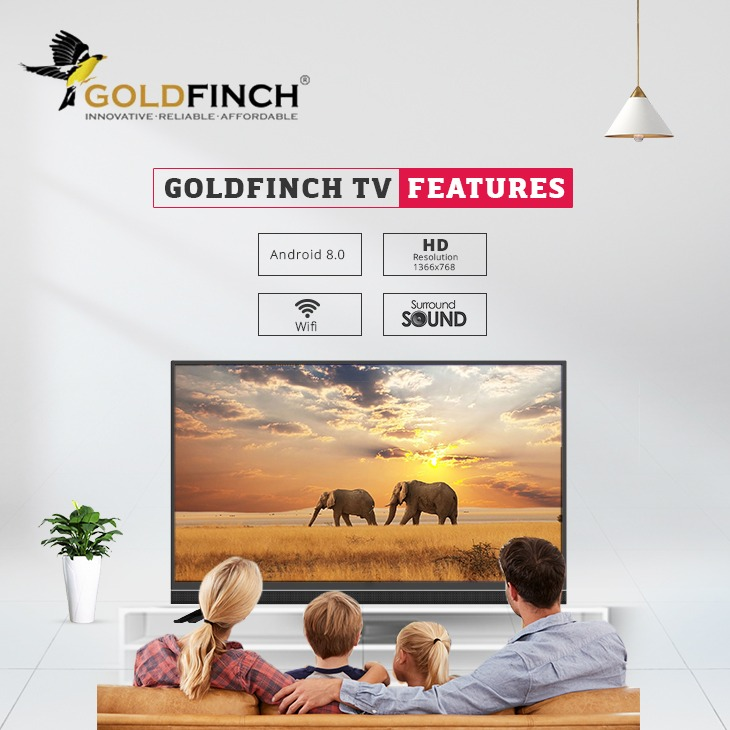 GOLDFINCH TV FEATURES